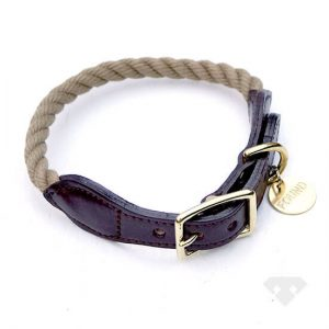 Found My Animal Adjustable Dog Collar