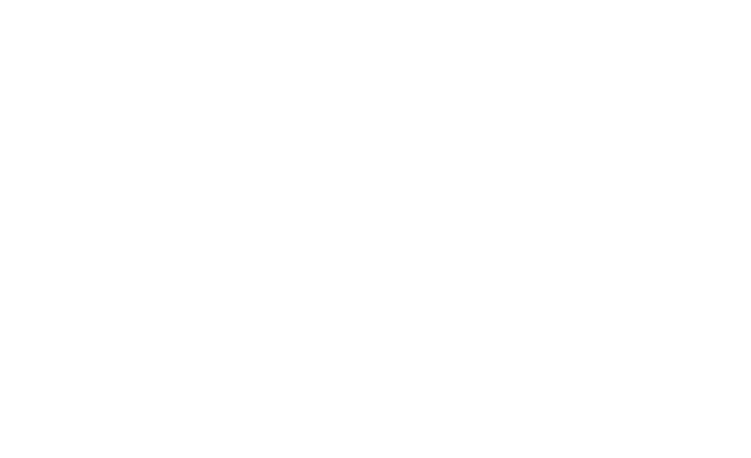 Swag & Wag - Sourcing the best dog products from across the globe