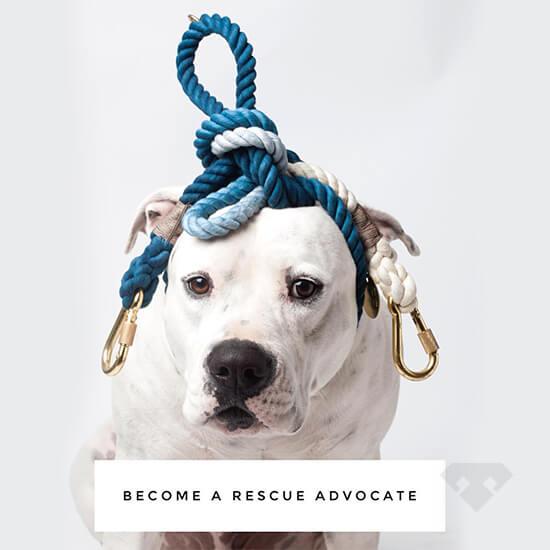 Found My Animal Adjustable Dog Lead