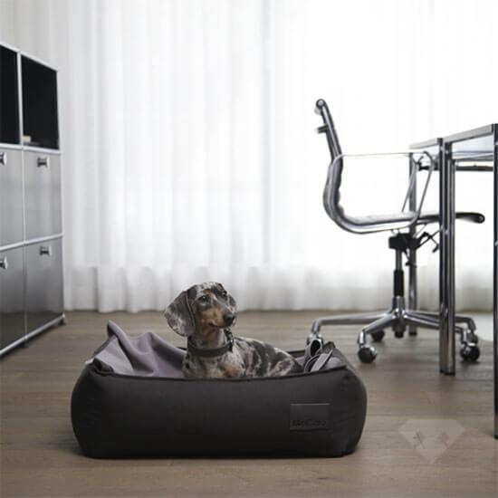 Box Bed Anthracite